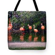Flamingos II Tote Bag