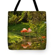 Flamingos Wading Tote Bag