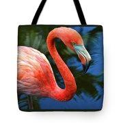 Flamingo Wading In Pond Tote Bag