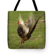 Flap Flap  Tote Bag