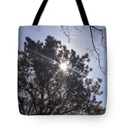 Flashlight Canope Tote Bag