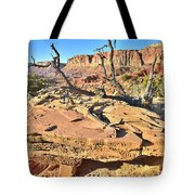 Flat Rock Along Scenic Drive Tote Bag