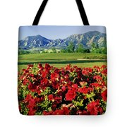 210546-v-flatirons And Flowers V  Tote Bag