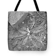 Flattened Tote Bag