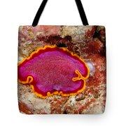 Flatworm Tote Bag