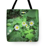 Flawed Perfection Tote Bag