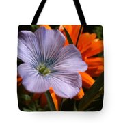 Flax And Aster Tote Bag