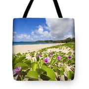 Fleming Beach Tote Bag