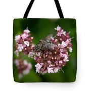 Flesh Fly Tote Bag