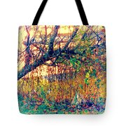 Fletcher Lake  14 Tote Bag