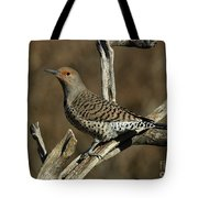 Flicker On Cedar Tote Bag