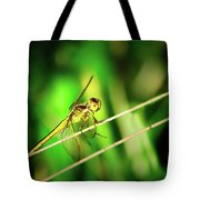 Flight Clearance Tote Bag