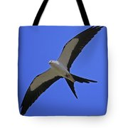 Flight Of The Kite Tote Bag