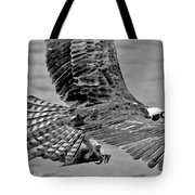 Flight Of The Osprey Bw Tote Bag
