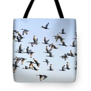 Flight Of The White Ibis Tote Bag