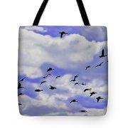 Flight Over Lake Tote Bag