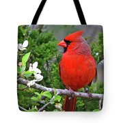 Flirty Red Tote Bag