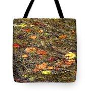 Floaties Tote Bag