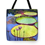 Floating Galaxies Tote Bag