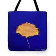 Floating Leaf 3 - Birch Tote Bag