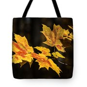 Floating Leaves Tote Bag