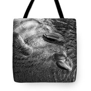 Floating Manatee Tote Bag