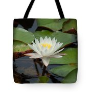 Floating Water Lilly Tote Bag