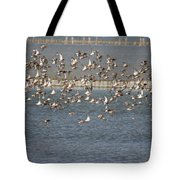 Flock Of Birds In Flight  Tote Bag