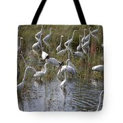 Flock Of Different Types Of Wading Birds Tote Bag