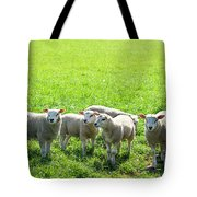 Flock Of Sheep Standing In A Field Waiting Tote Bag