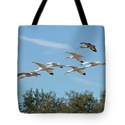 Flock Of White Ibises Tote Bag