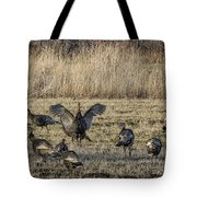 Flock Of Wild Turkeys Tote Bag