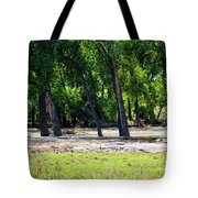 Flood Plain Tote Bag