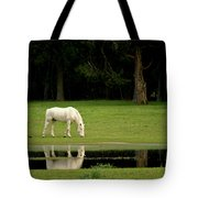 Flooded Field In May Tote Bag