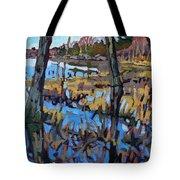 Flooded Land Tote Bag