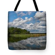 Flooded Low Country Rice Field Tote Bag