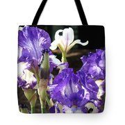 Flora Bota Irises Purple White Iris Flowers 29 Iris Art Prints Baslee Troutman Tote Bag