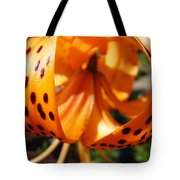 Floral Abstracts Art Prints Summer Tiger Lily Baslee Troutman  Tote Bag