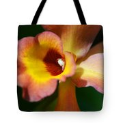 Floral Art - Intimate Orchid 3 - Sharon Cummings Tote Bag