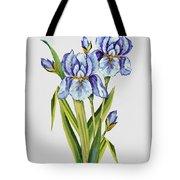 Floral Botanicals-jp3786 Tote Bag
