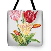 Floral Botanicals-jp3788 Tote Bag