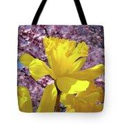 Floral Fine Art Daffodils Art Prints Spring Flowers Sunlit Baslee Troutman Tote Bag
