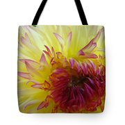 Floral Fine Art Dahlia Flower Yellow Red Prints Baslee Troutman Tote Bag