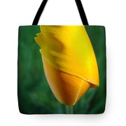 Floral Poppy Flower Poppies Art Prints Giclee Baslee Troutman Tote Bag