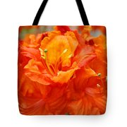 Floral Rhodies Art Prints Orange Rhododendrons Canvas Art Baslee Troutman Tote Bag