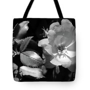 Floral Spotlight  Tote Bag