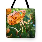 Floral Tiger Lily Flower Art Print Orange Lilies Baslee Troutman Tote Bag