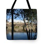 Florence Moods, 2849, Ix/2014 Tote Bag