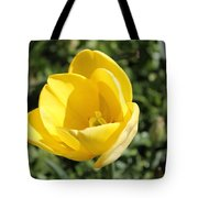 Floriade 8 Tote Bag