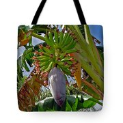 Florida Banana Flower And Fruit Tote Bag